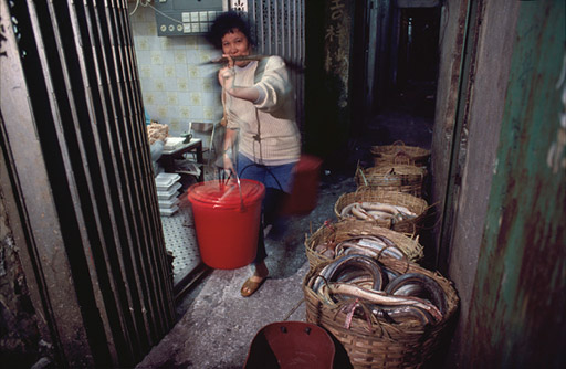Baskets of eels wait to be processed in the alley outside the factory.